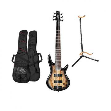 Custom Ibanez GSR206SM-NGT 6-String Electric Bass - Natural Grey Burst with Gig Bag and Stand