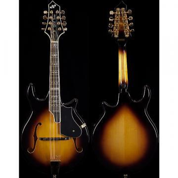 Custom Gold Tone GM-110 Rigel Style Mandolin