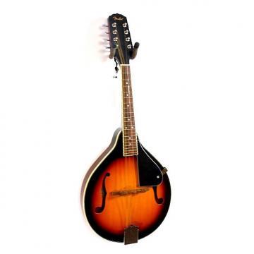 Custom Fender FM-100 Mandolin, Sunburst