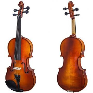 Custom Paititi 4/4 Size Artist-200 Serie Solid Wood Ebony Fitted Violin with Bow Lightweight Case and More