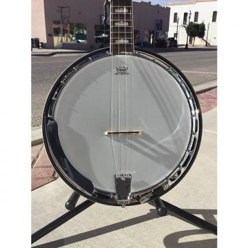 Custom Fender Robert Schmidt 4 String  Closed Back Banjo