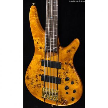 Custom Ibanez SR805 5-String Amber (149)