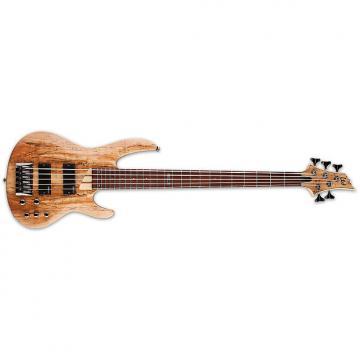 Custom ESP LTD B-205 B Series Bass Guitar 5-string Natural Satin Spalted Maple Top B205