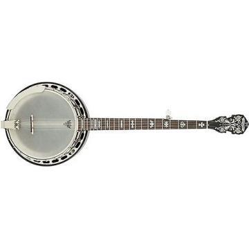 Custom Fender Deluxe Concert Tone 58 Banjo