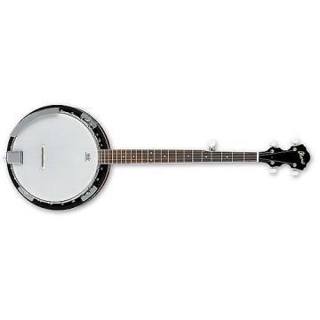 Custom Ibanez B50 5-String Banjo