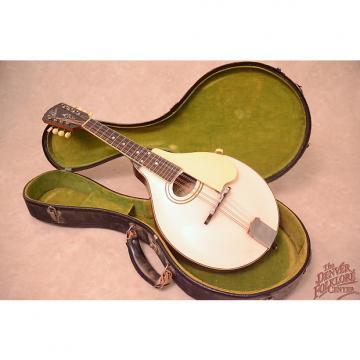 Custom Gibson  A-3 Mandolin c.1920