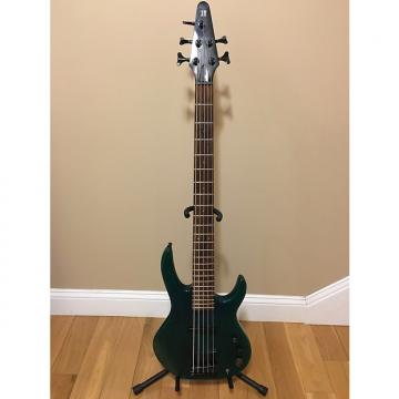 Custom Hohner 5 String Bass Neck Through Body Transparent Green