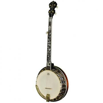 Custom Morgan Monroe Deluxe Nickel Banjo W/ Case