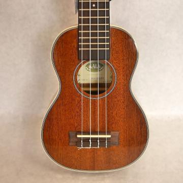 Custom Kala Glossy Long Neck Soprano Ukulele KA-SLNG