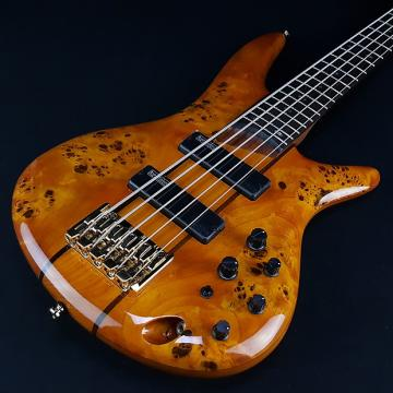 Custom Ibanez SR805AM 5 String Active Bass Amber