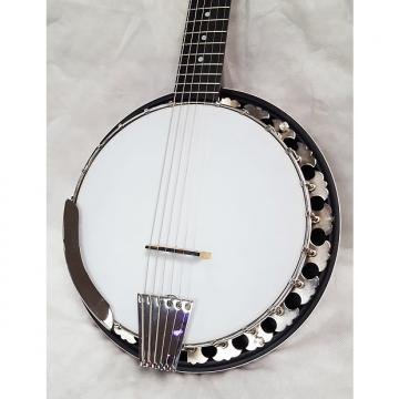 Custom Deering Boston Six String Banjo