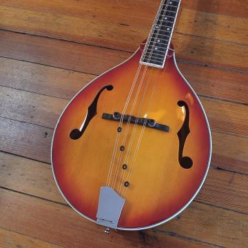 Custom Michael Kelly A Solid R Mandolin w/Free Shipping