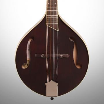Custom Breedlove Crossover OF F-Hole Mandolin (with Gig Bag), Violin Stain