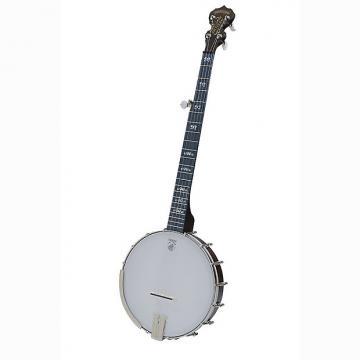 Custom Deering Artisan Goodtime 5-String Openback Banjo Brown w/ Planetary Tuners