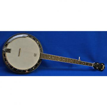 Custom Washburn B11 Banjo Minor Blem Natural Mahogany w/ Hard Case Professionally Set Up!