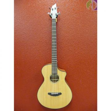 Custom Breedlove Pursuit Bass, Gig Bag Included