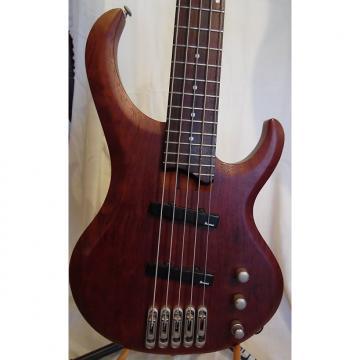 Custom Ibanez BTB 5 String Bass