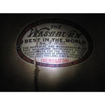 Custom Washburn Mandolin late 19th/early 20th