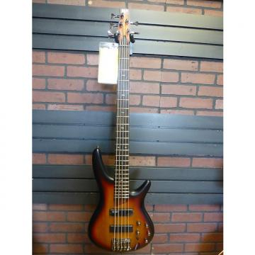 Custom Ibanez SR505 Flat Burst 5-String Electric Bass