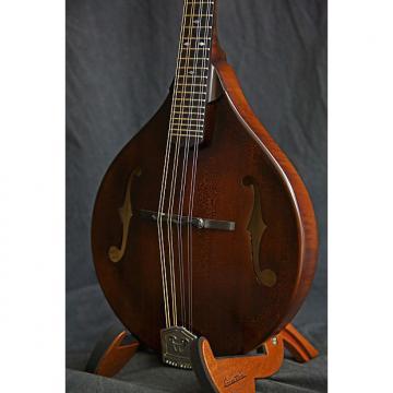 Custom Weber Gallatin A Mandolin