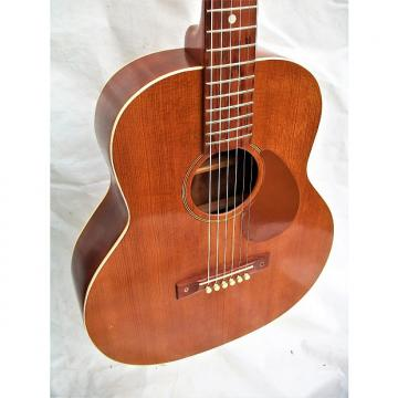Regal guitar models