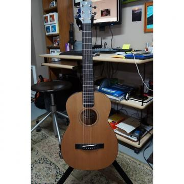 Custom martin acoustic guitars Furch martin acoustic strings  acoustic guitar martin LJ10 guitar martin Little martin strings acoustic Jane Travel Guitar
