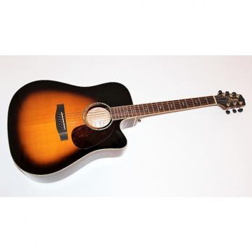 Custom dreadnought acoustic guitar Takamine martin acoustic guitars EG350SC martin d45 VS martin guitar Sunburst martin guitar case Dreadnought Acoustic Electric Guitar