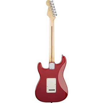 Fender American Standard Stratocaster Solid-Body Electric Guitar with Hard-Shell Case, Dakota Red