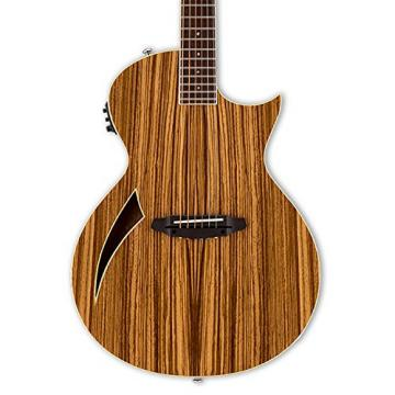 ESP martin LTL6ZNAT-KIT-2 acoustic guitar martin Thinline martin guitar accessories Series martin acoustic guitar strings TL-6Z martin guitar strings acoustic medium Acoustic-Electric Guitar, Natural Gloss