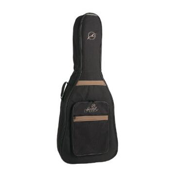 Seagull Entourage Rustic Guitar with Gig Bag and Accessory Pack