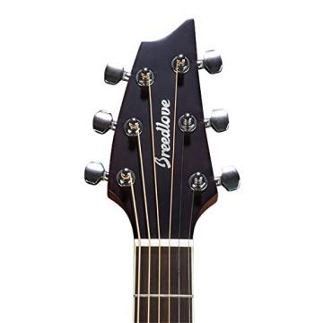 Breedlove Discovery Concert CE SB Sunburst Acoustic Electric Guitar w/Bag - NEW