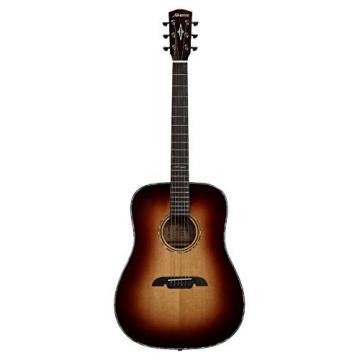 Alvarez ADA1965 Solid Top Acoustic Dreadnought Guitar w/Padded Gig bag & More