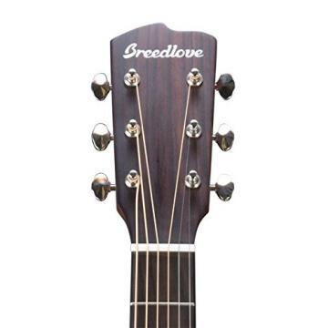 Breedlove Pursuit Dreadnought EB Ebony B&S A/E Guitar w/Hard case & More