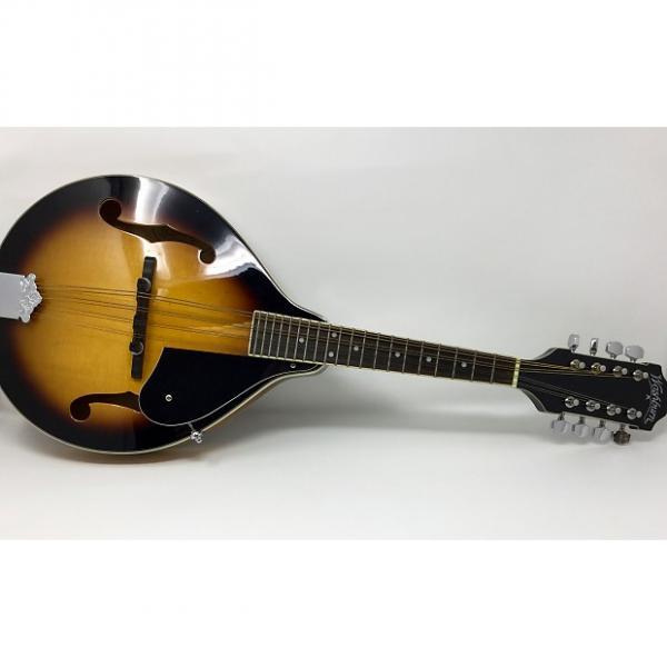 Custom Washburn M1K A-Style Mandolin Sunburst #1 image