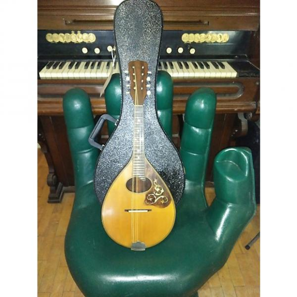 Custom Vintage Antique 1920's (early to mid) Harwood Artist Mandolin + Hardcase #1 image