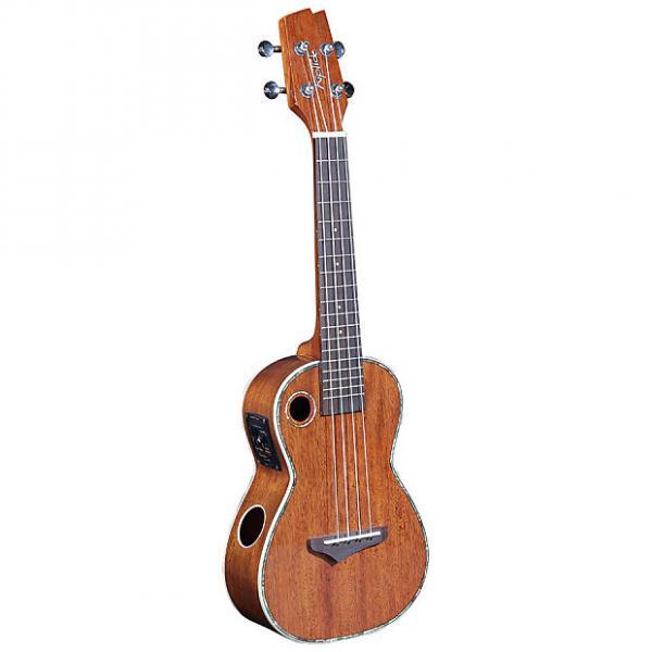 Custom Riptide EUC-5NG Acoustic-Electric Concert Ukulele - Solid Mahogany Top #1 image