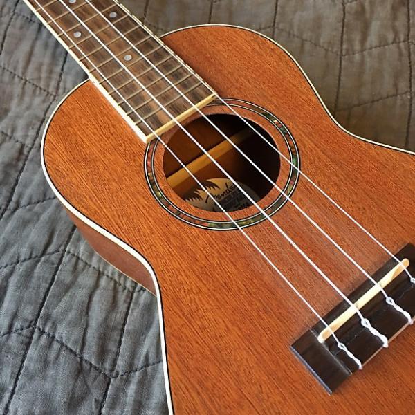 Custom Fender Mino'Aka #1 image