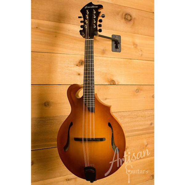 Custom Breedlove Premier American FF Sitka Spruce and Maple with Vintage Burst Finish Pre-Owned 2014 #1 image