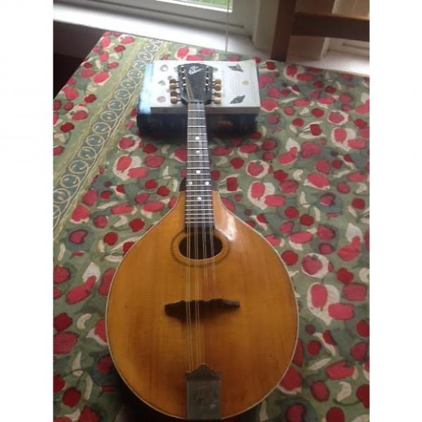 Custom Gibson Mandolin A1 1920's Pumpkin #1 image