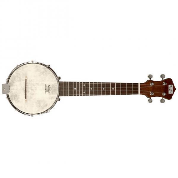 Custom NEW Recording King RK-U25 Madison Banjolele Banjo Uke Ukulele #1 image