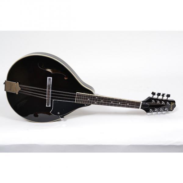 Custom Ibanez M510 A-Style Mandolin #1 image