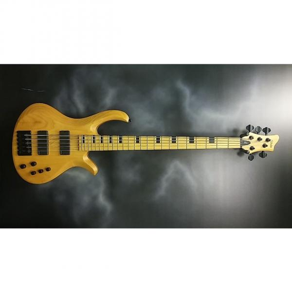 Custom Schecter Riot-5 Session #1 image