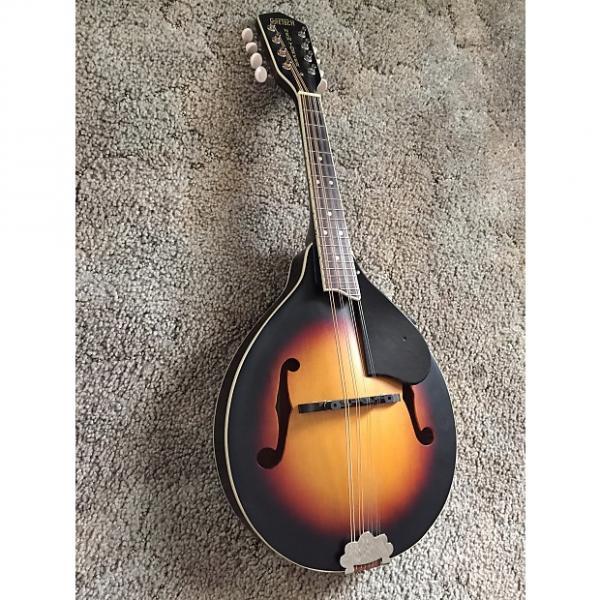 Custom Gretsch G9320 New Yorker Mandolin 2000's Sunburst #1 image
