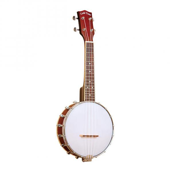 Custom Gold Tone BUS Soprano-Scale Banjo Ukulele with Case #1 image