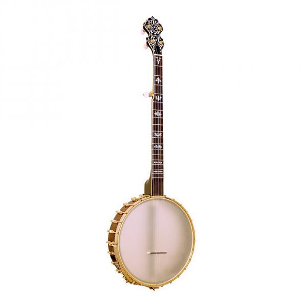 Custom Gold Tone BB-400+ Banjo Bass with Pickup and Case #1 image