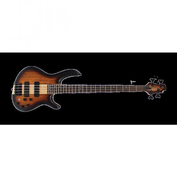 Custom Cort Artisan C4 Plus Bass Guitar - Zebra Wood Tobacco Burst #1 image