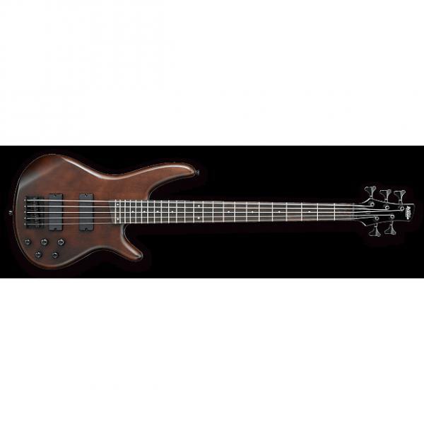 Custom Ibanez SR255B WNF 5 String Bass Guitar - Walnut #1 image