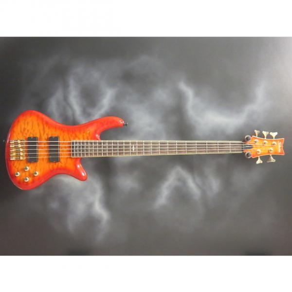 Custom Schecter Elite 5 #1 image