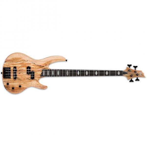 Custom ESP LTD RB-1004SM Natural Satin NS NEW Electric Bass + Free Bag RB1004SM RB 1004 SM Rocco #1 image