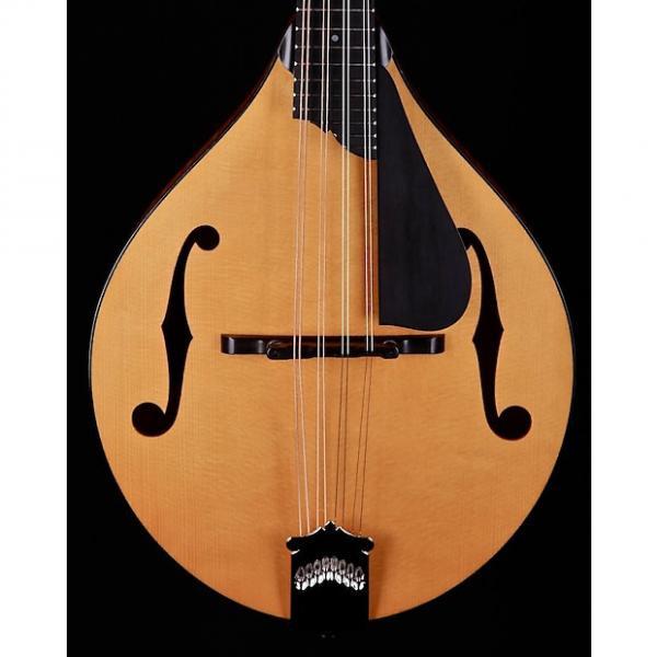 Custom Collings MT A-Style F-Hole Mandolin Gloss Top #1 image